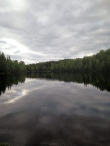 stille vann
